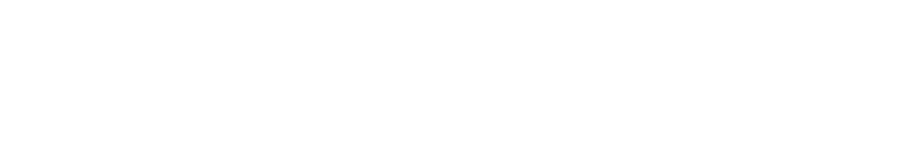 Raleigh Gyros Timeline